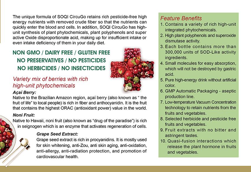 CircuGo Flyer Page 3