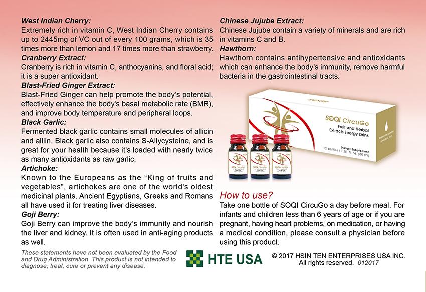 CircuGo Flyer Page 4